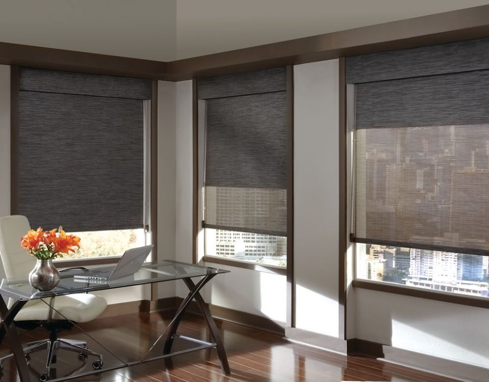 shades blinds dual designs banded
